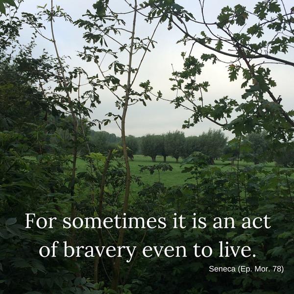 www.vansijl.com Act of bravery to live