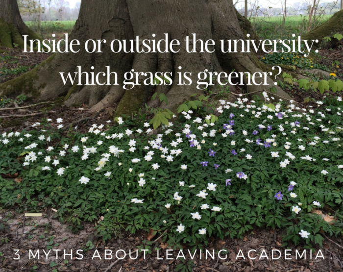 which grass www.vansijl.com